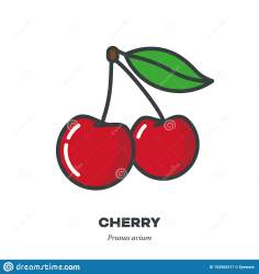 vector filled outline cherry fruit icon