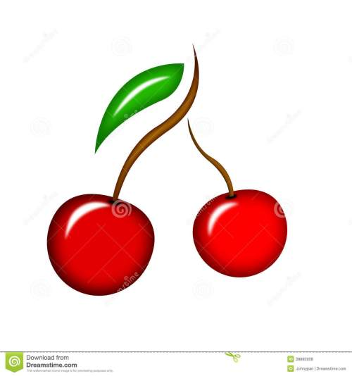 small resolution of cherry fruit
