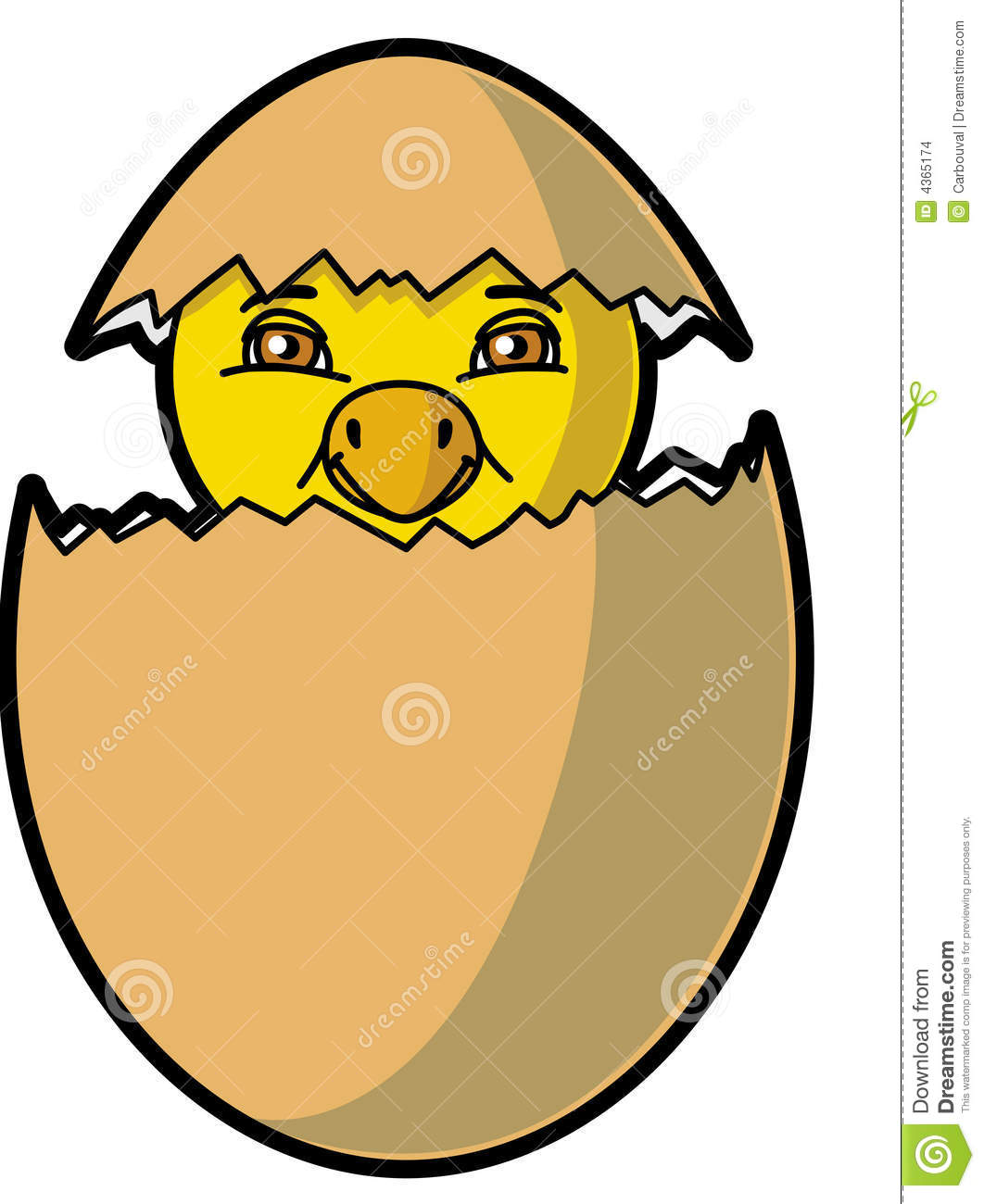 Chick Coming Out Of The Egg Stock Images
