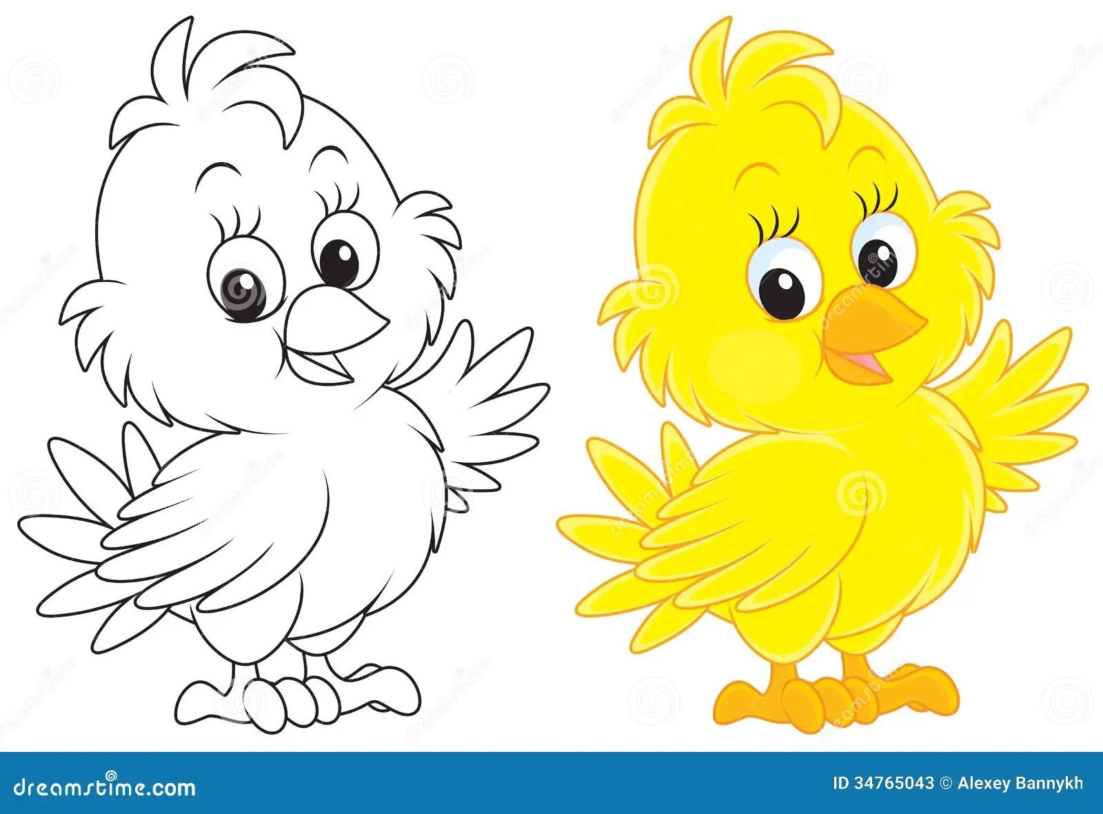 Chick Stock Illustration Illustration Of Illustration