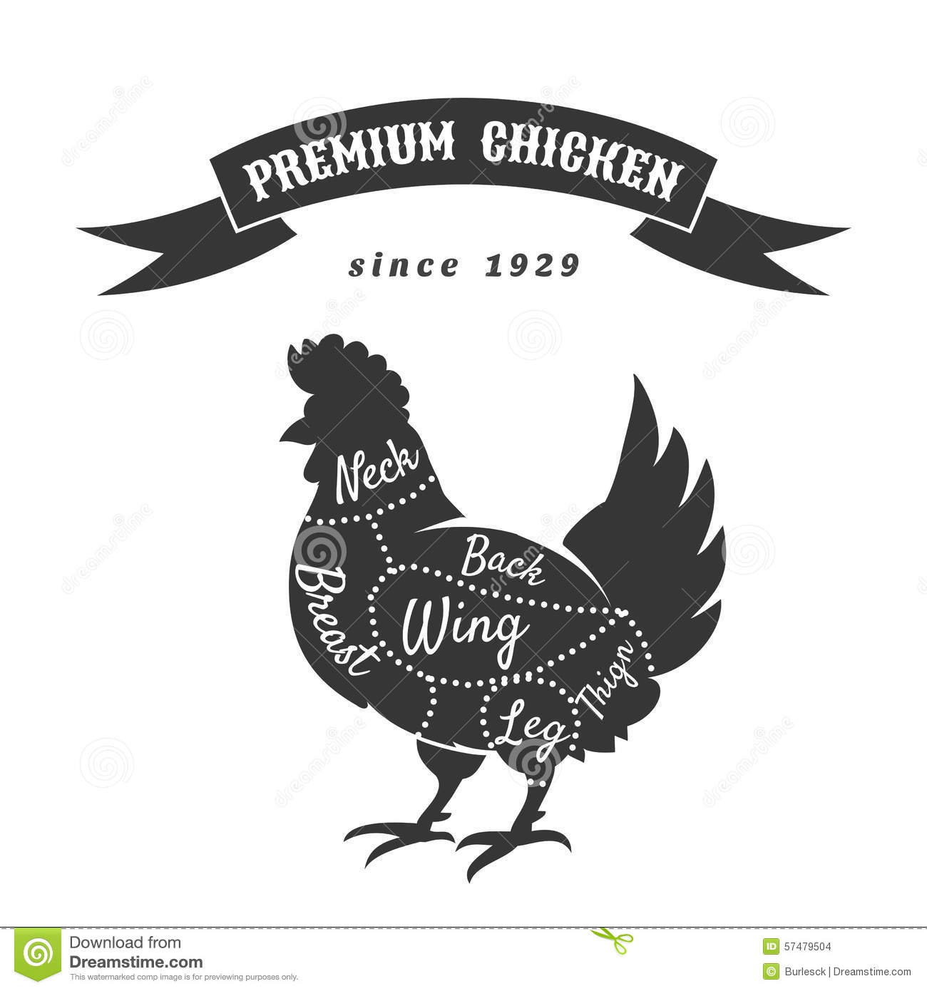 Chicken Meat Cuts Diagram Stock Vector