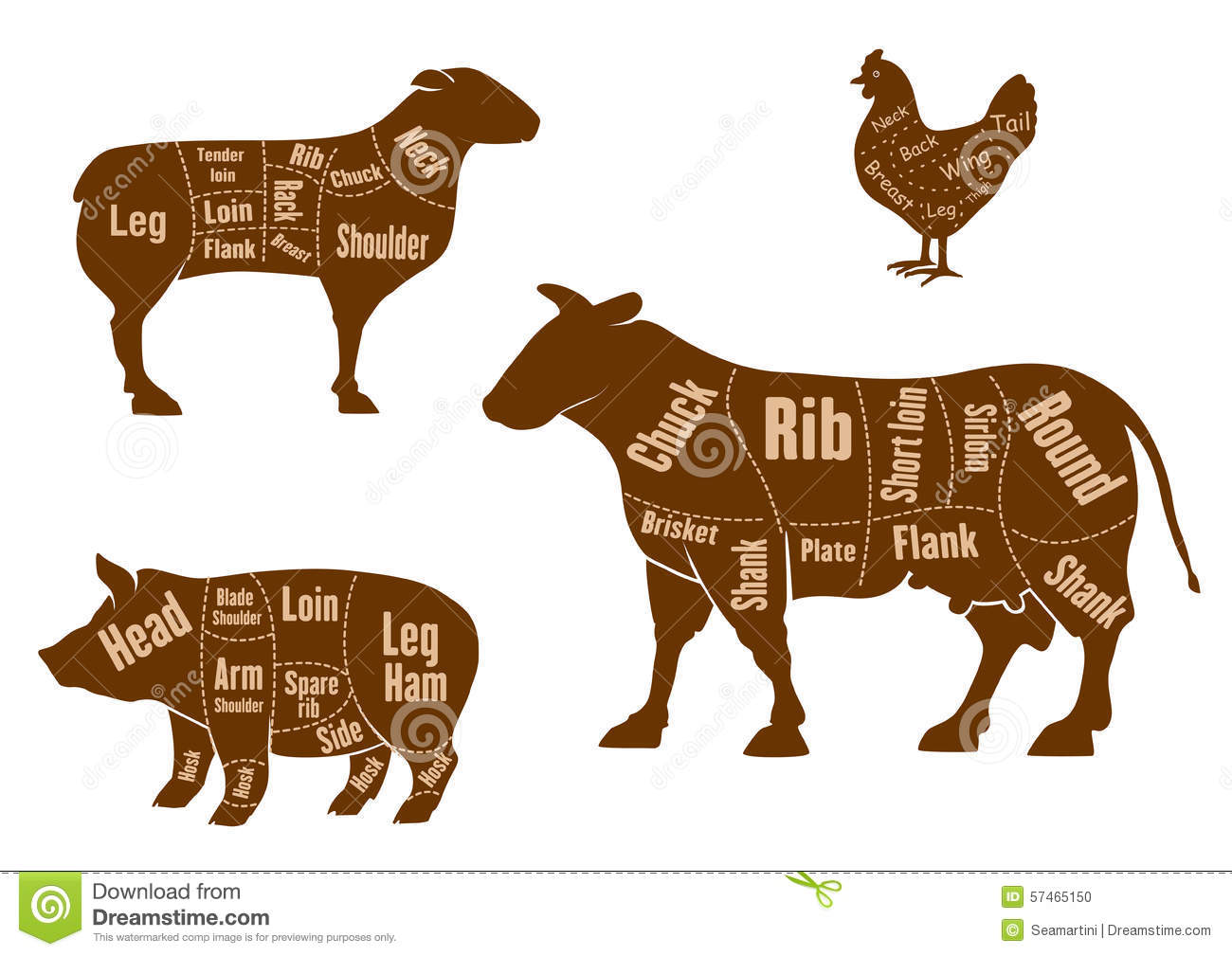 pork butcher cuts diagram how to draw a venn with 3 circles chicken, pork, beef and lamb meat scheme stock vector - image: 57465150