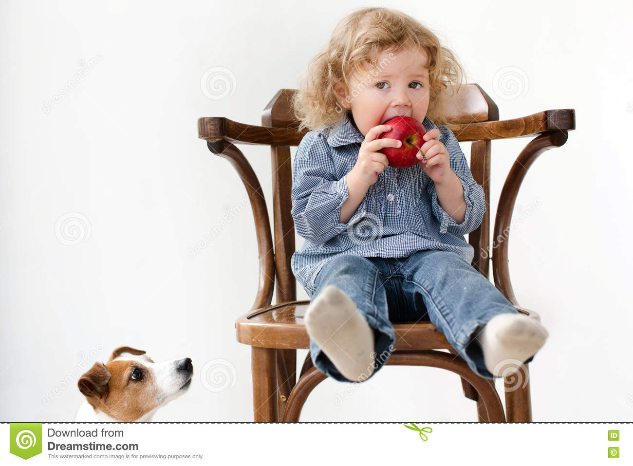 baby chair 1 year old diy glider rocking cushions child eats apple little dog looking isolated stock image