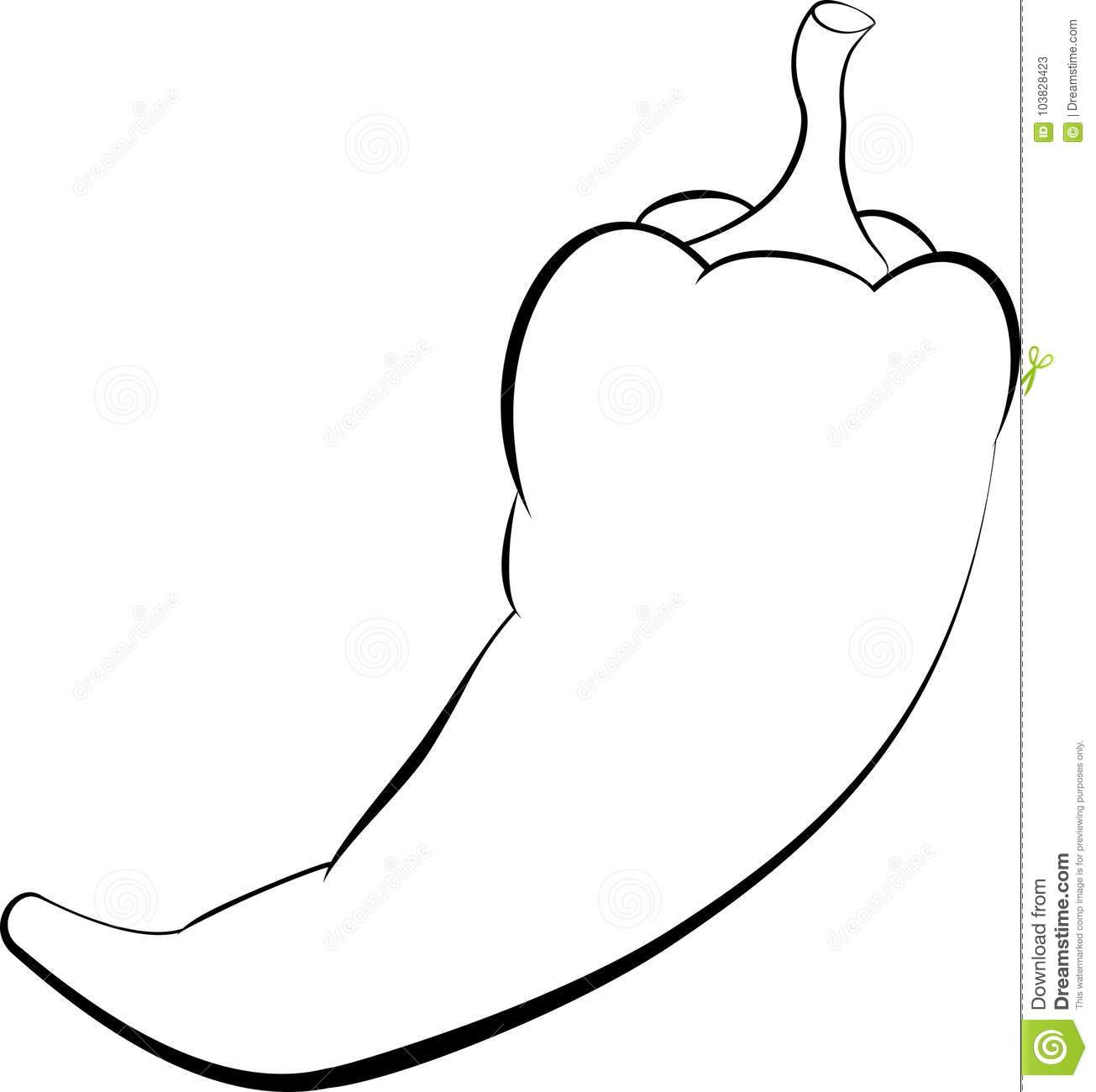 Chili Pepper Icon Outline Stock Vector Illustration Of