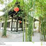 The Chinese Bamboo Garden And House Stock Photo Image Of Historic Bridge 51192652