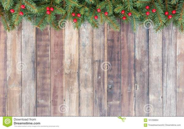 Christmas Border With Christmas Tree Fir And Red Berries