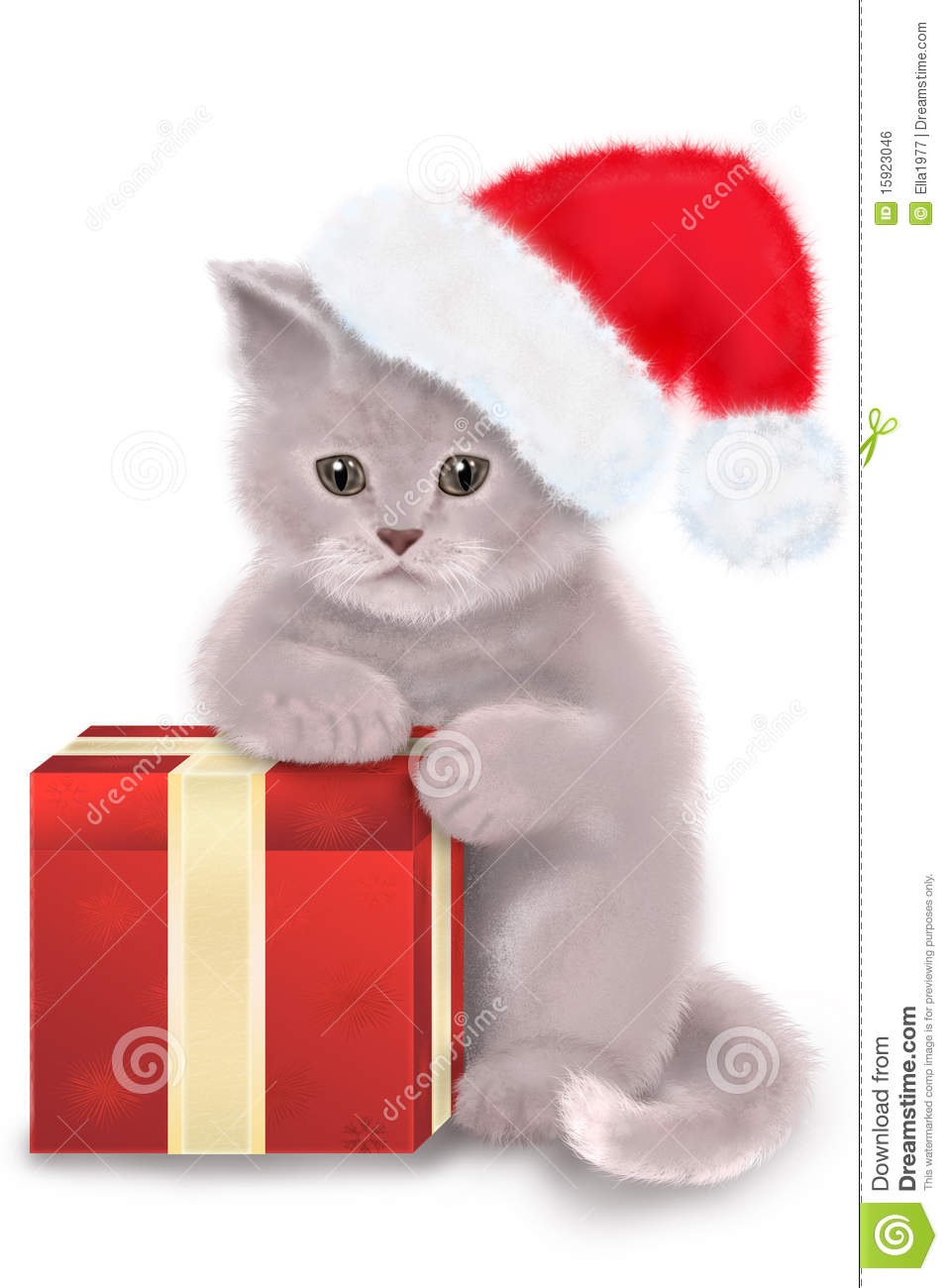 Christmas Cat Royalty Free Stock Image Image 15923046