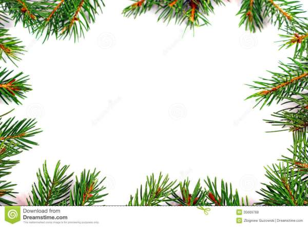 Christmas Frame With Natural Fir Tree Branch Stock Photo