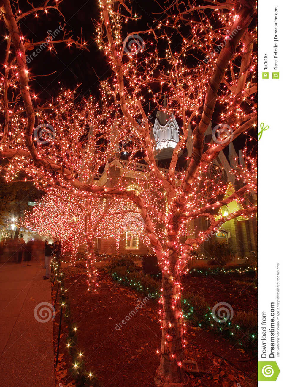 Christmas Lights In The Night 2 Royalty Free Stock Photos