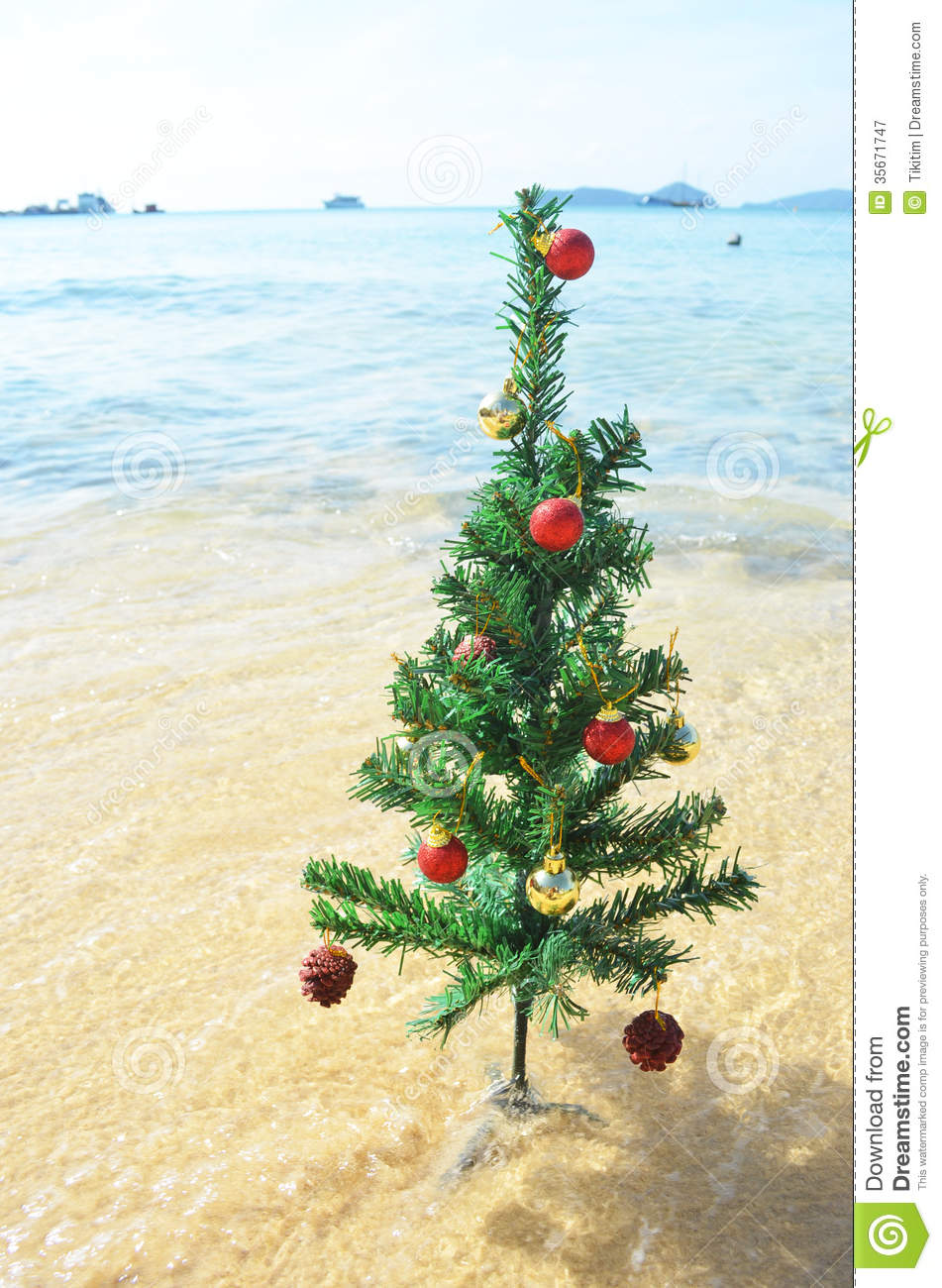 Christmas Tree Stock Image Image Of Bright Tree Holiday