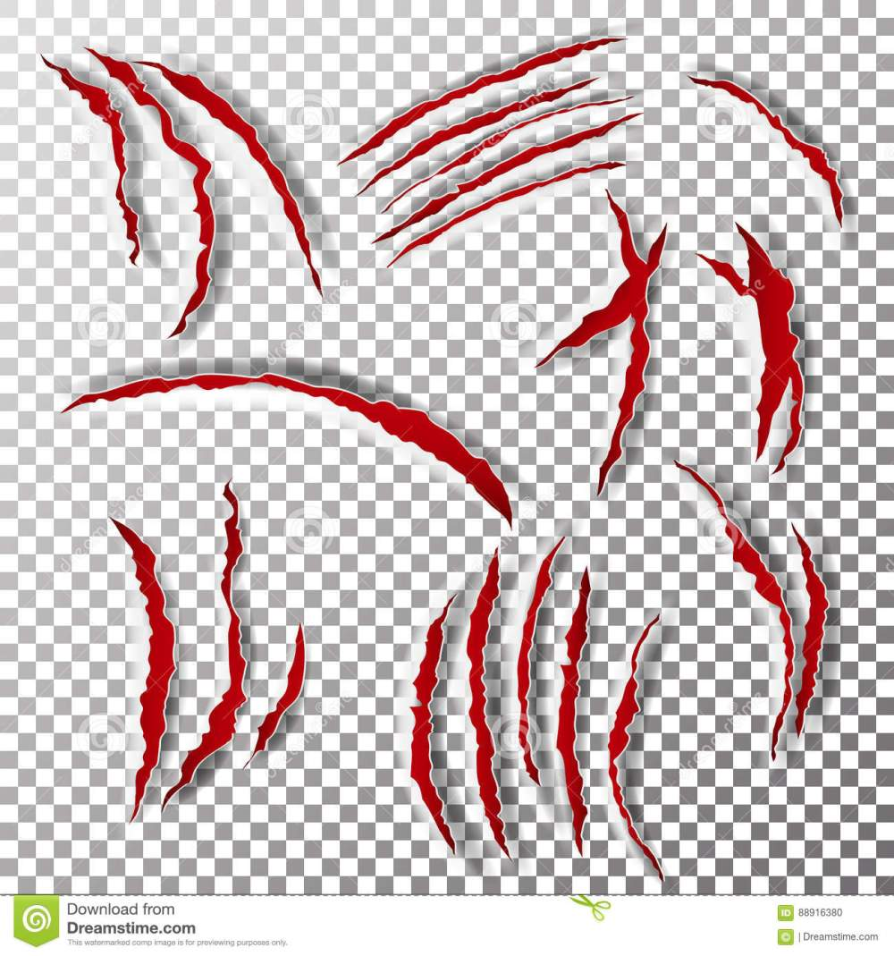 medium resolution of claws scratches vector claw scratch mark bear or tiger paw claw scratch bloody
