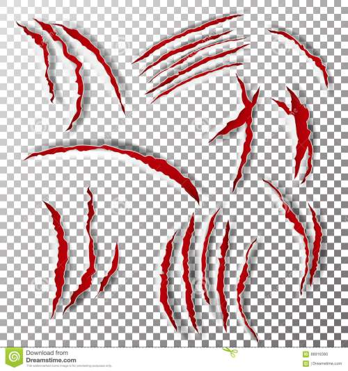 small resolution of claws scratches vector claw scratch mark bear or tiger paw claw scratch bloody