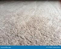 Clean Plush Carpet Floor Stock Photo - Image: 51799408