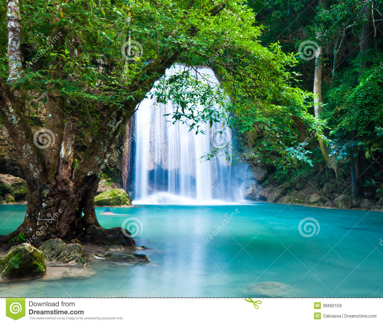 Fall Flowers Desk Background Wallpaper Cliff Of Waterfall In Deep Forest Stock Image Image Of