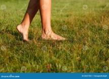 Close- Of Female Legs Stock - 34227501