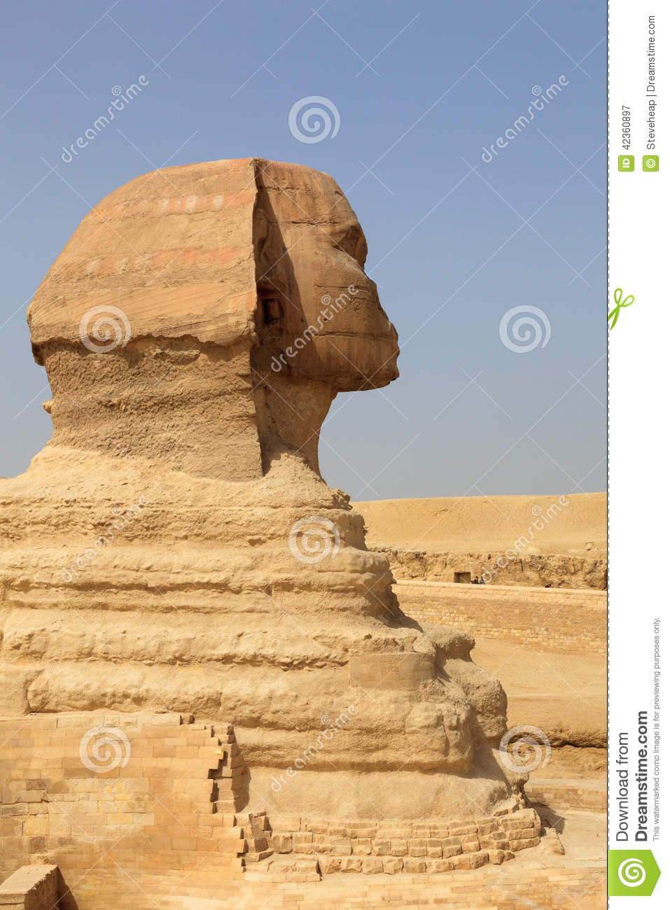 Close Up Of Side View Of Sphinx Cairo Stock Photo  Image
