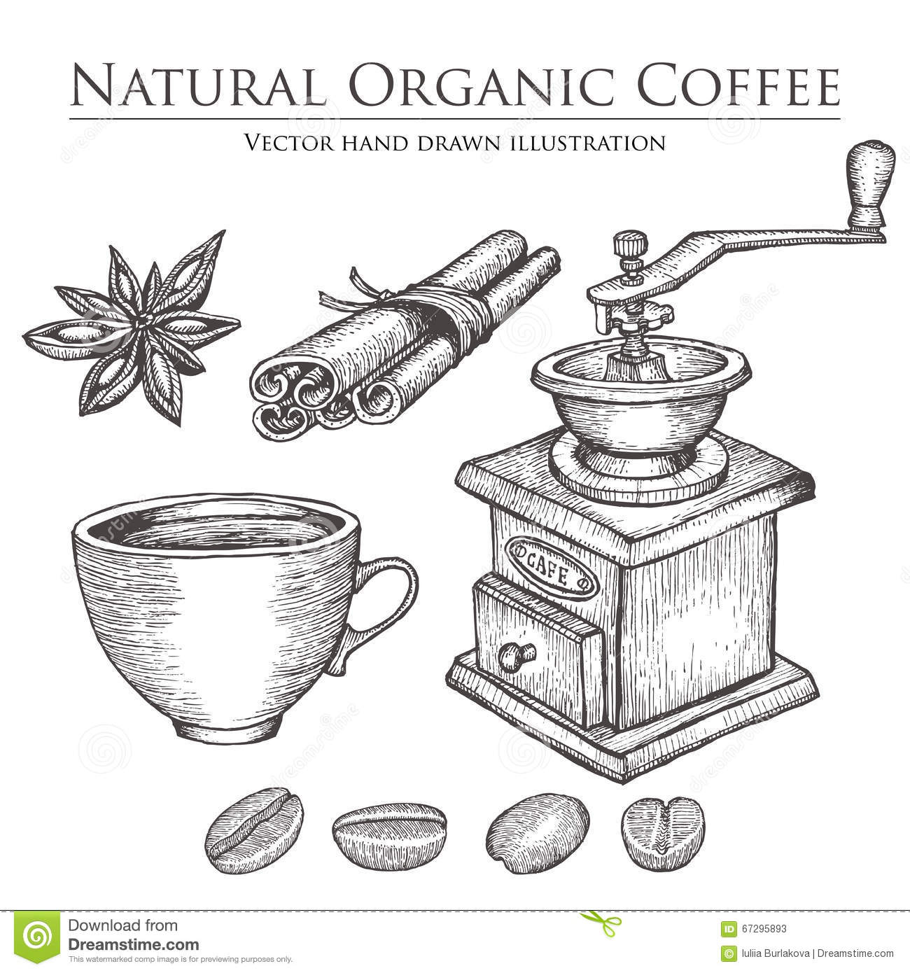 Coffee Mill ,bean, Seed, Fruit, Cinnamon, Star Anise, Cup