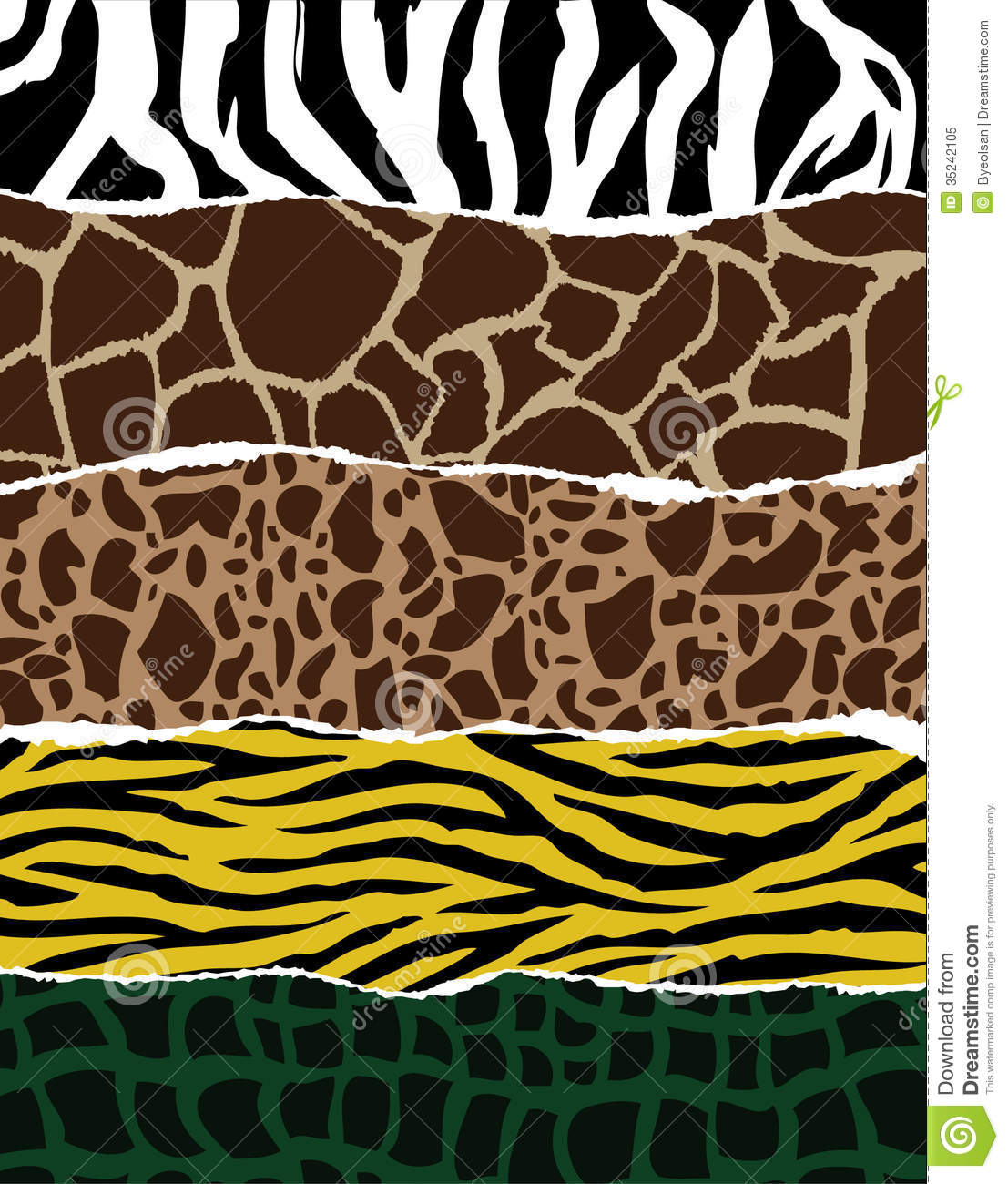 Black Animal Print Wallpaper Collection Of Animal Patterns Stock Vector Image 35242105