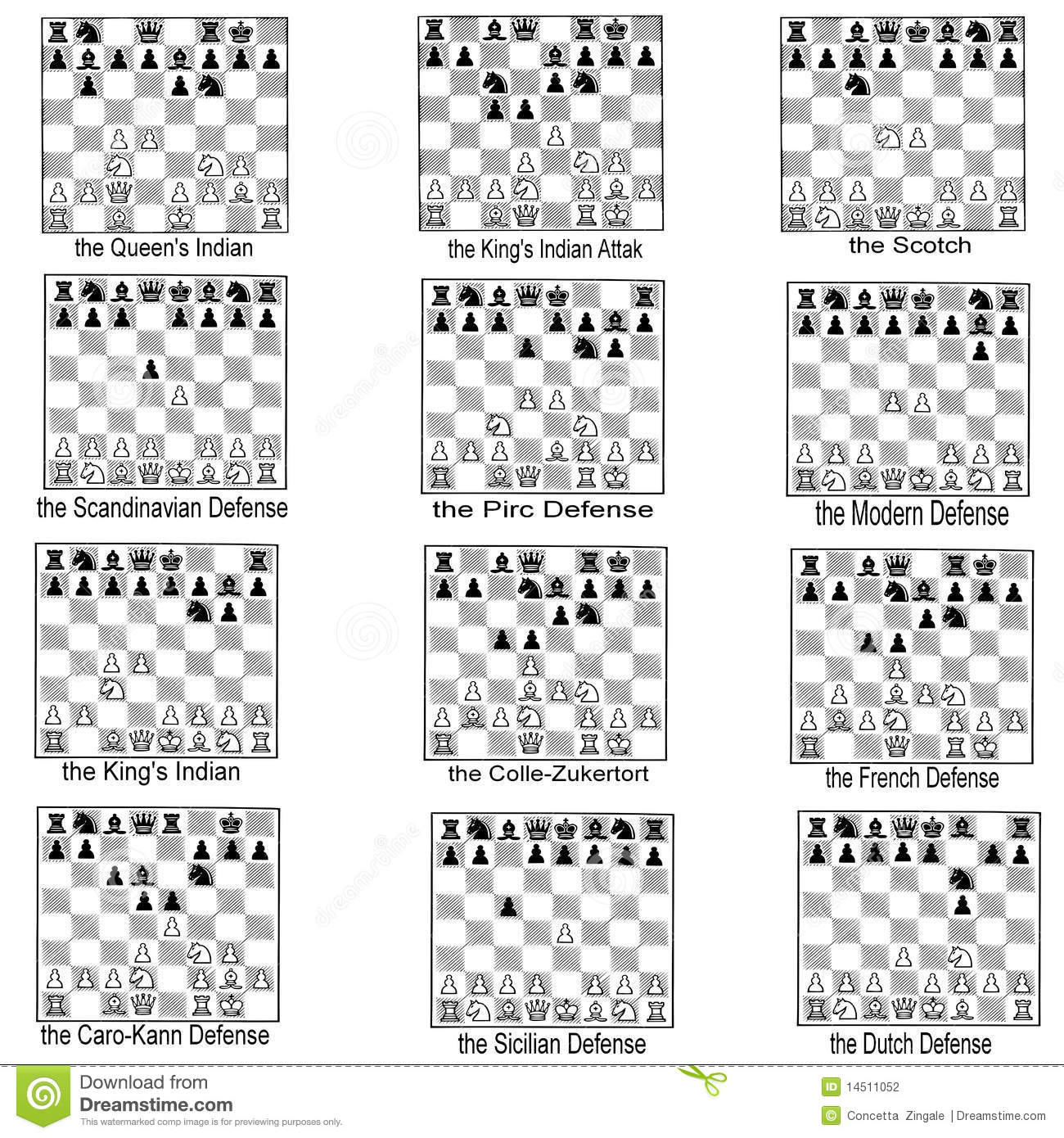 Collection Of Chess Openings Stock Illustration