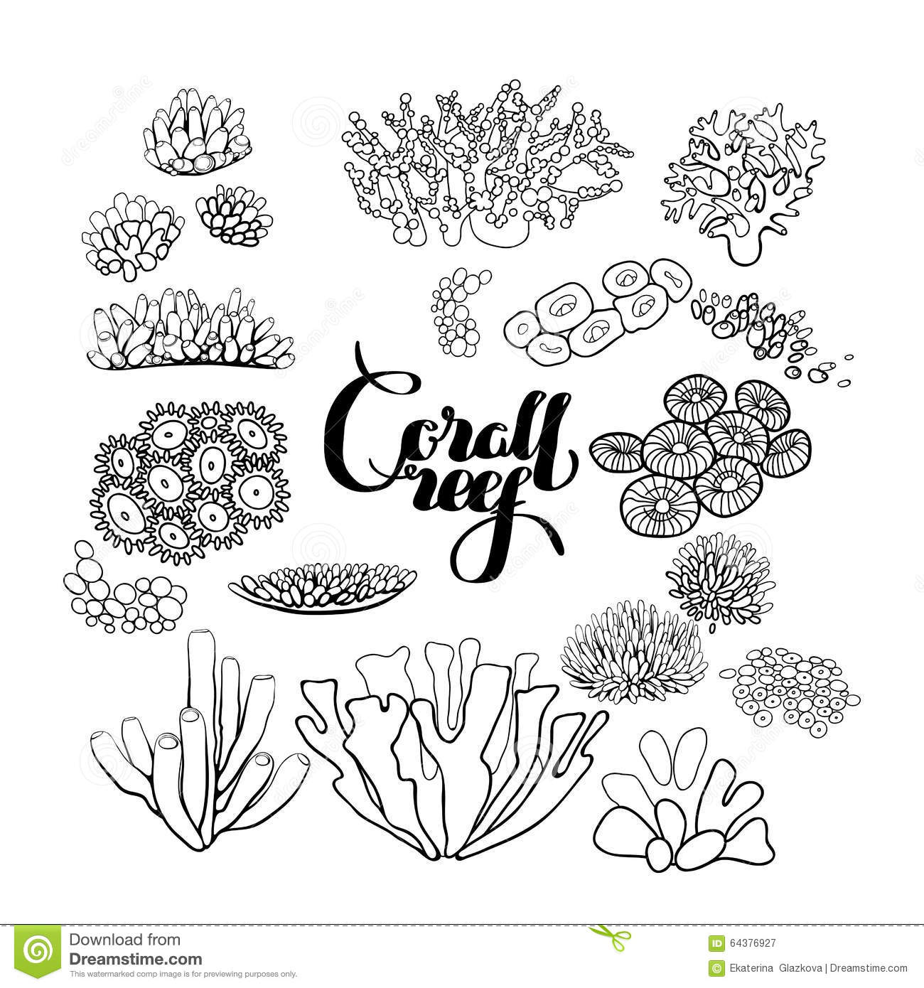 Collection Of Coral Reef Elements Stock Vector