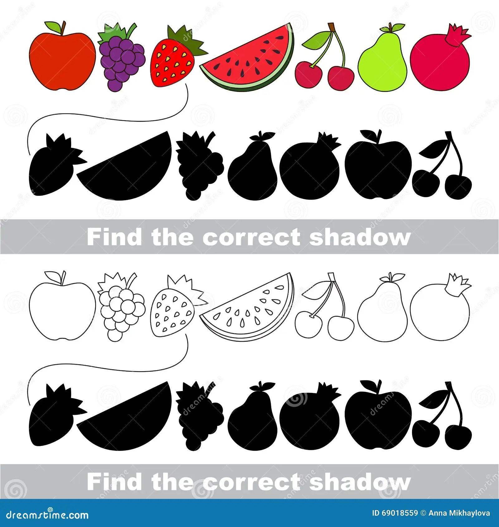 Collection De Fruit Trouvez L Ombre Correcte Illustration