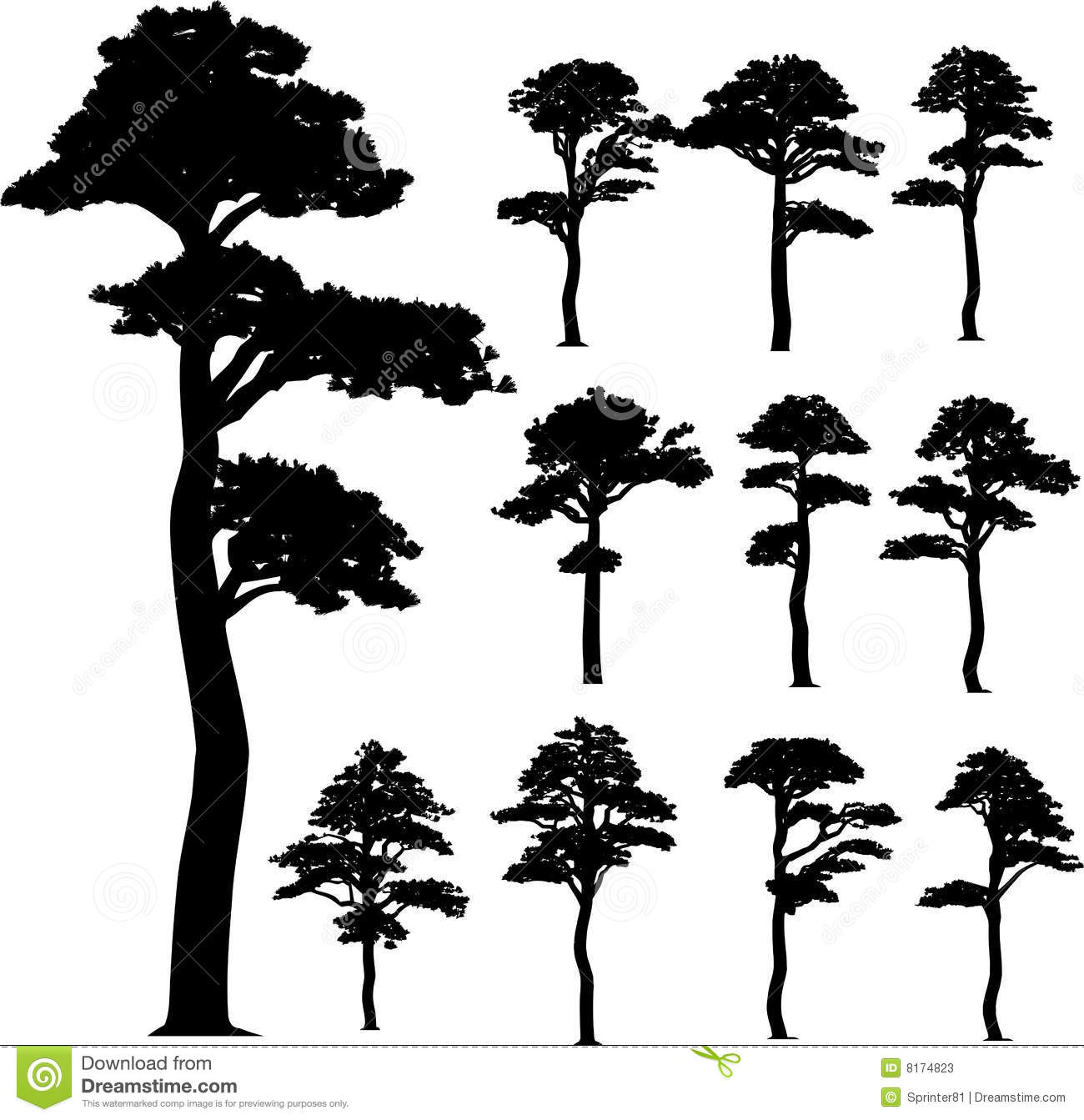 collection pine vector trees