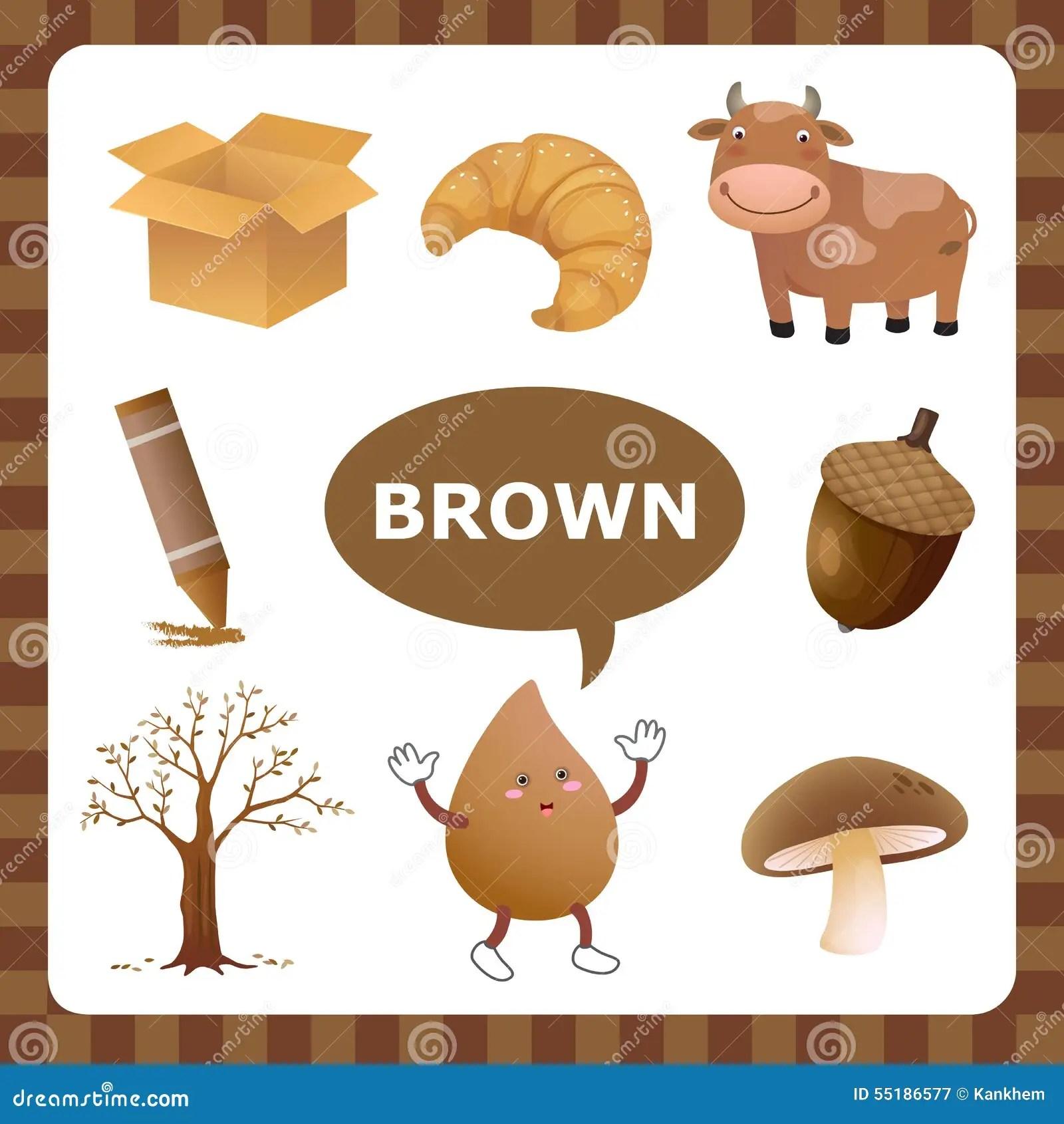 Color De Brown Ilustracion Del Vector