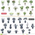 Simple Plants Stock Illustrations 19 269 Simple Plants Stock Illustrations Vectors Clipart Dreamstime