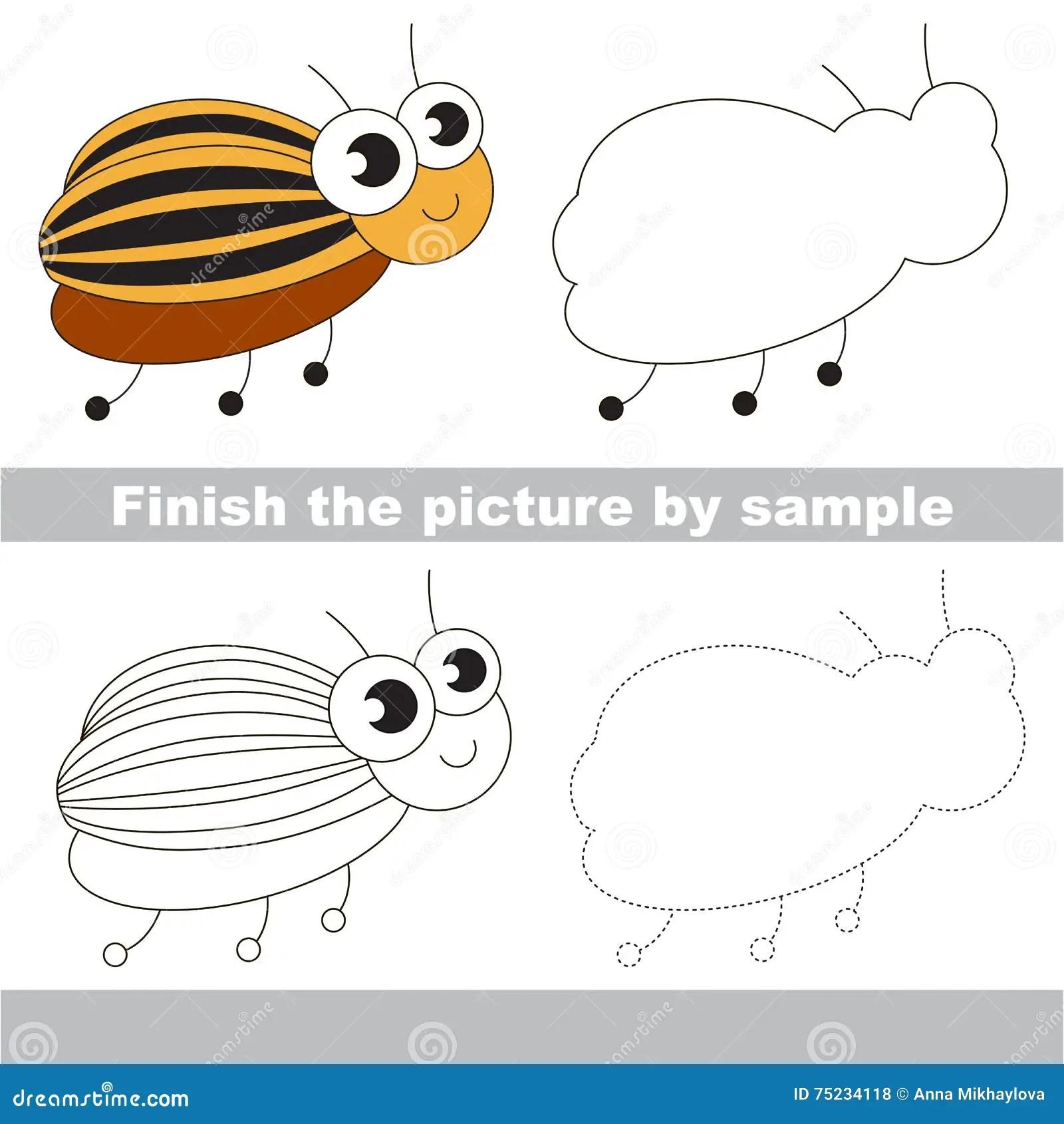 Colorado Beetle Drawing Worksheet Stock Vector
