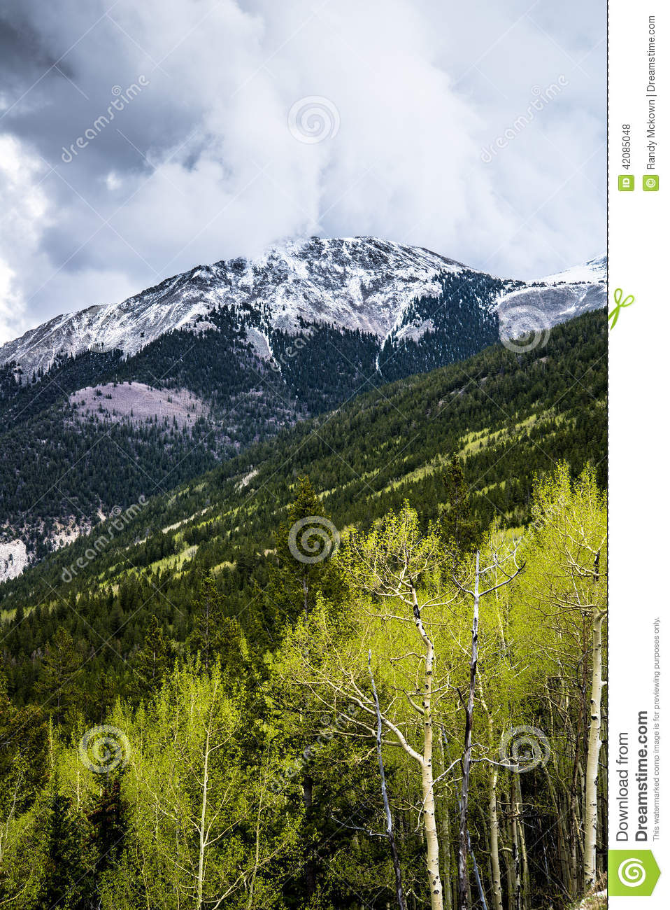 Black And Blue Floral Wallpaper Colorado Rocky Mountain Storm Stock Photo Image 42085048