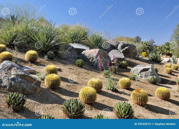 colorful desert landscape royalty