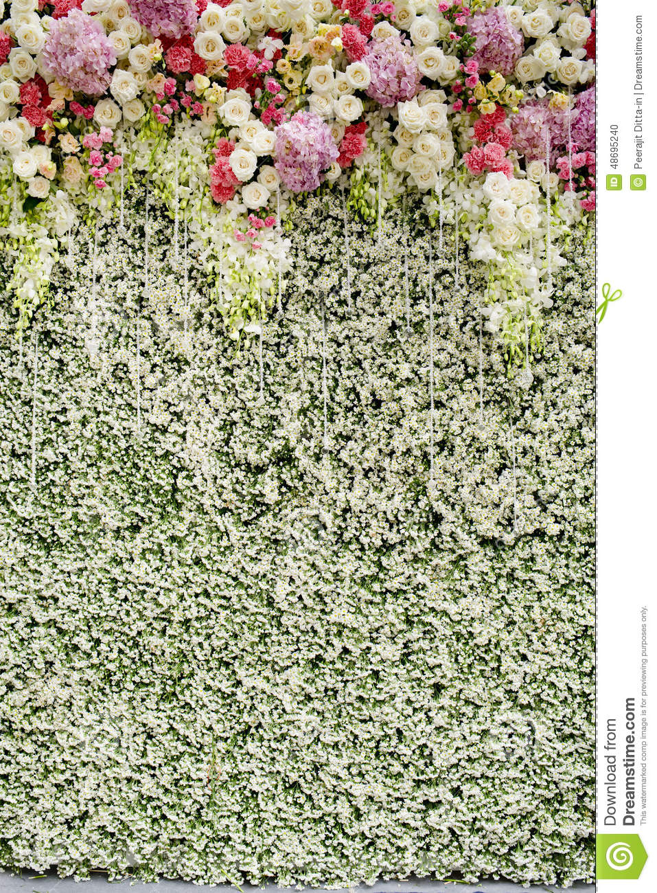 Colorful Flowers With Green Wall For Wedding Backdrop Stock Photo  Image 48695240