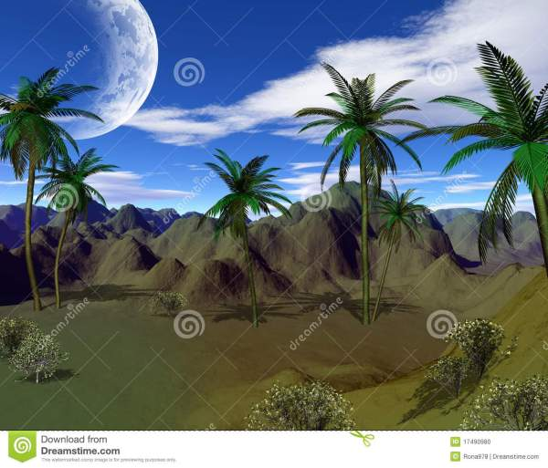 colorful tropical landscape stock