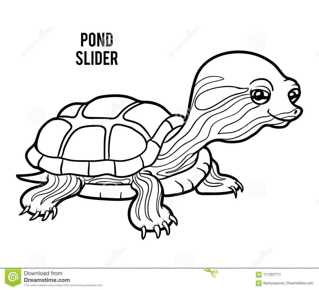 Coloring book, Pond slider stock vector. Illustration of