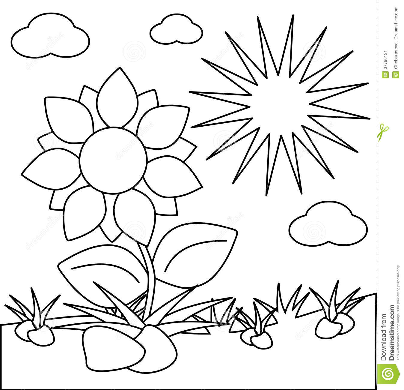 Coloring Flowers Isolated With Sun Stock Illustration