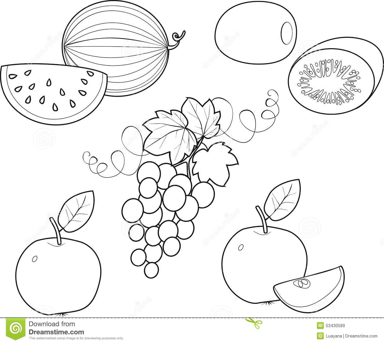 Coloring Fruit stock vector. Illustration of graphic - 53430589