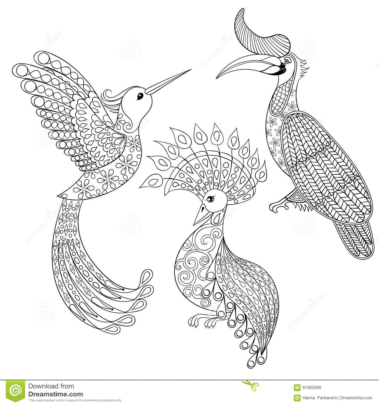 Coloring Page With Bird Rhinoceros, Hummingbird And Exotic