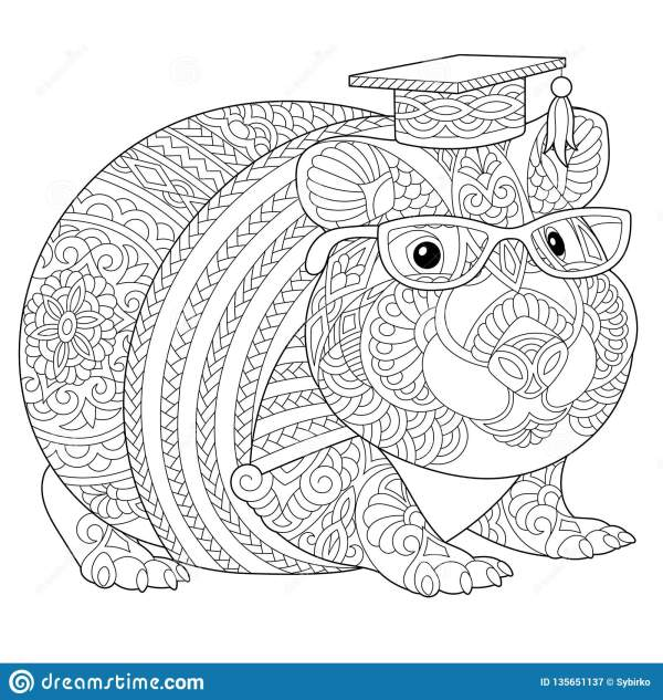 guinea pig coloring page # 27