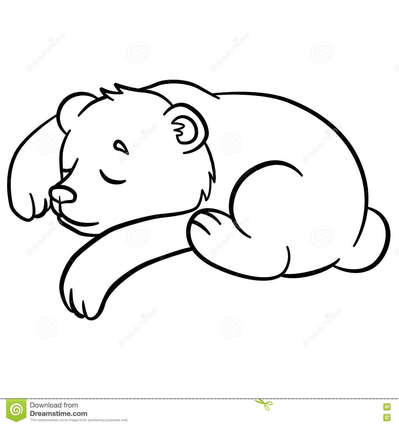 Coloring Pages Wild Animals Little Cute Baby Bear Sleeps