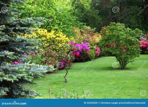 colourful flowering shrubs in