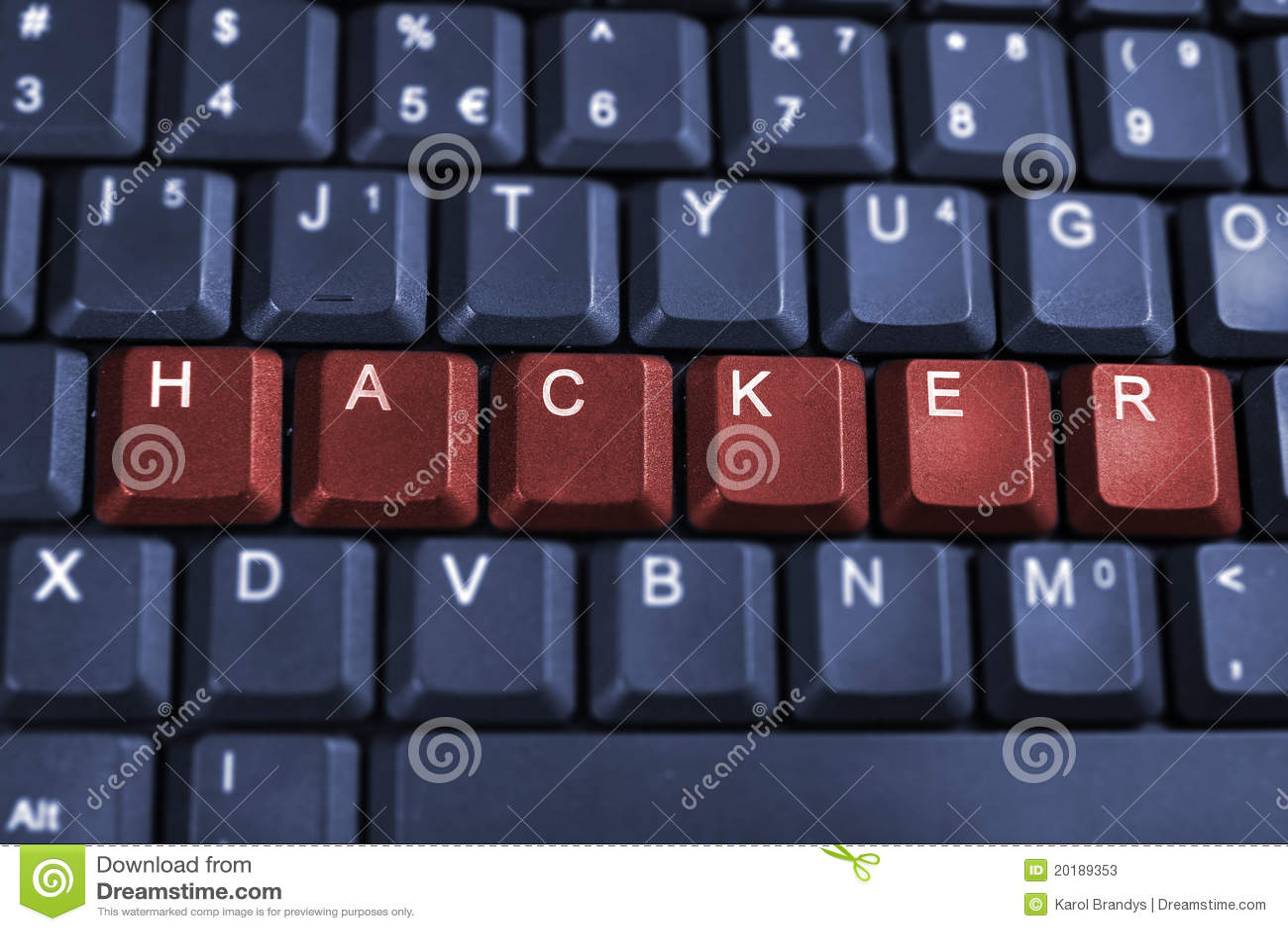 Web Hacking Security
