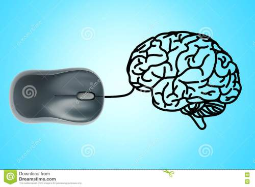 small resolution of computer mouse wire in to human brain