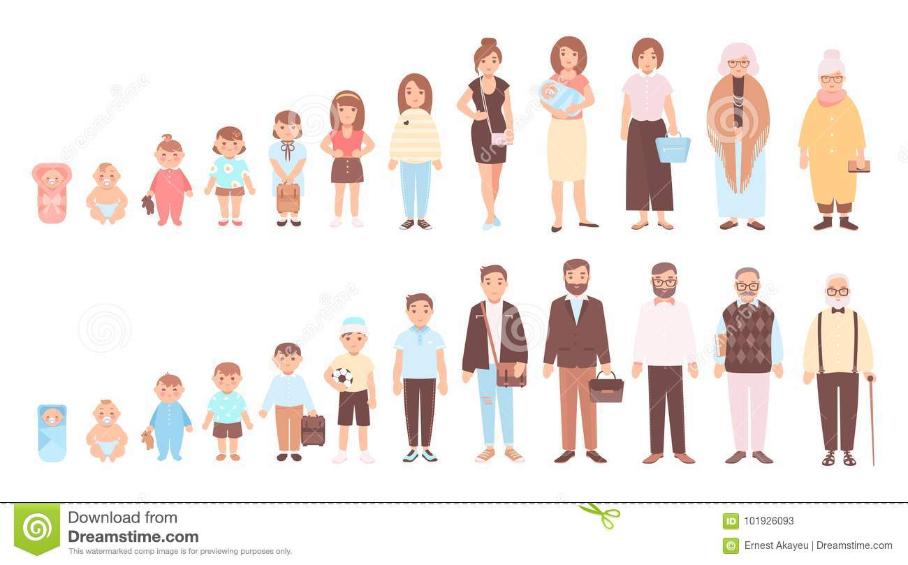 Concept Of Life Cycles Of Man And Woman Visualization Of