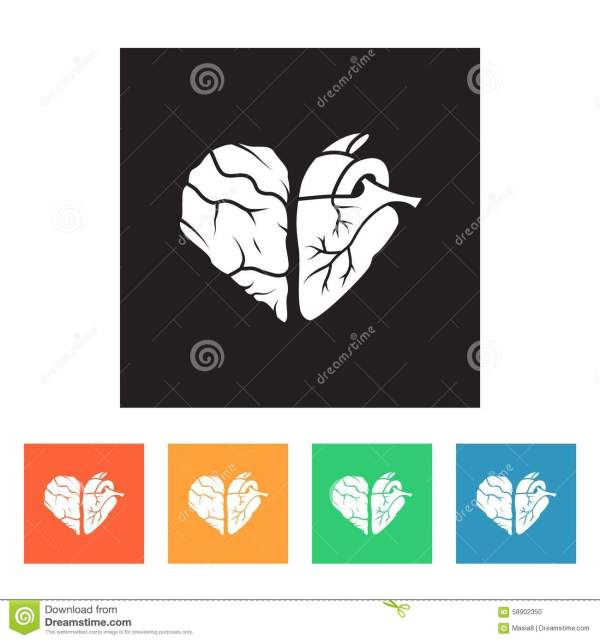 Conceptual Art Heart And Of Brain Stock