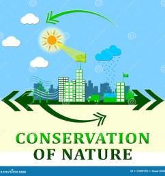 conservation of nature means conserve 3d illustration [ 1300 x 1318 Pixel ]