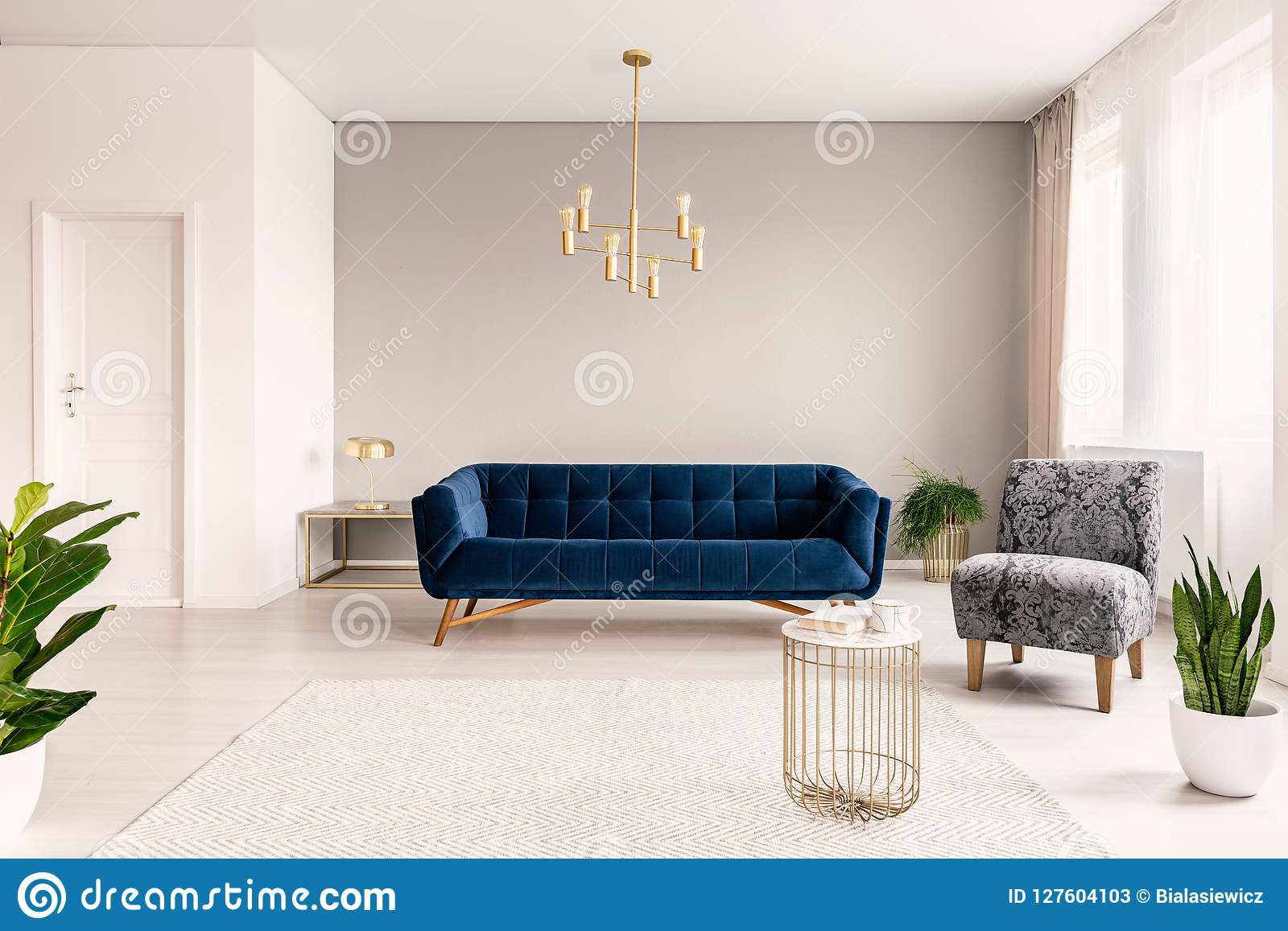 dark blue couch in living room deep red copy space interior with a gray armchair and gold