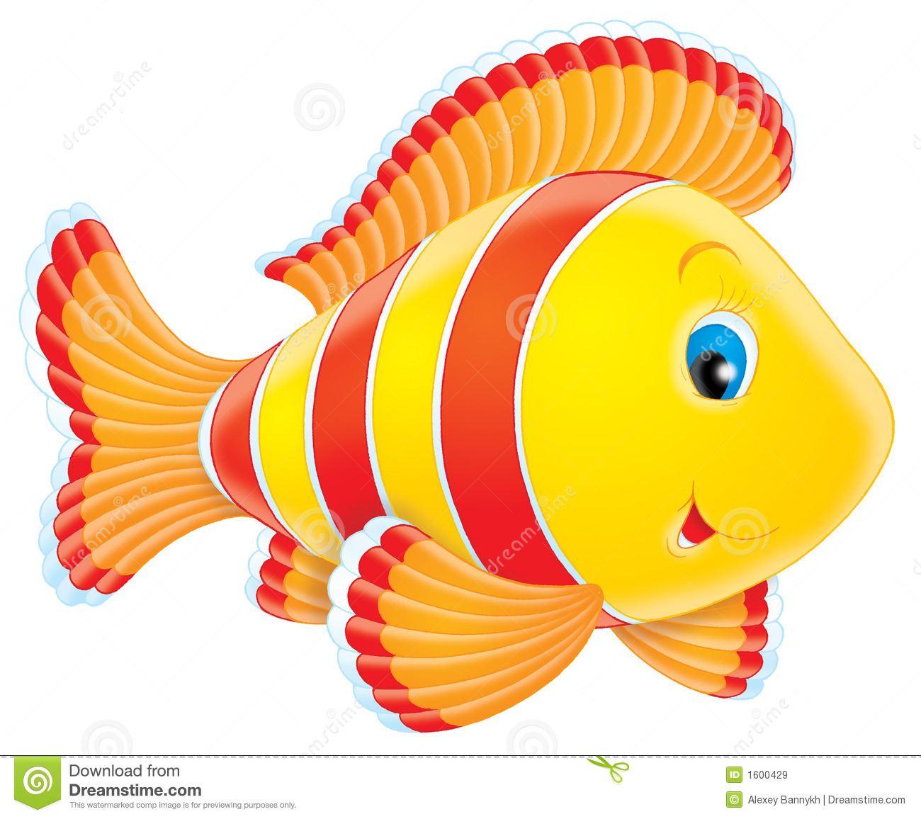 hight resolution of coral fish