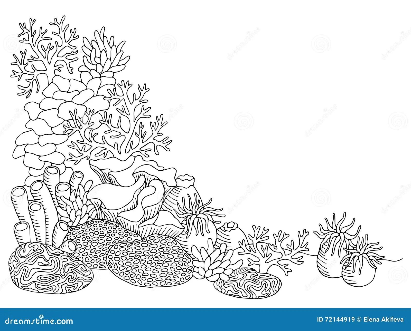 Coral Sea Graphic Art Black White Underwater Landscape