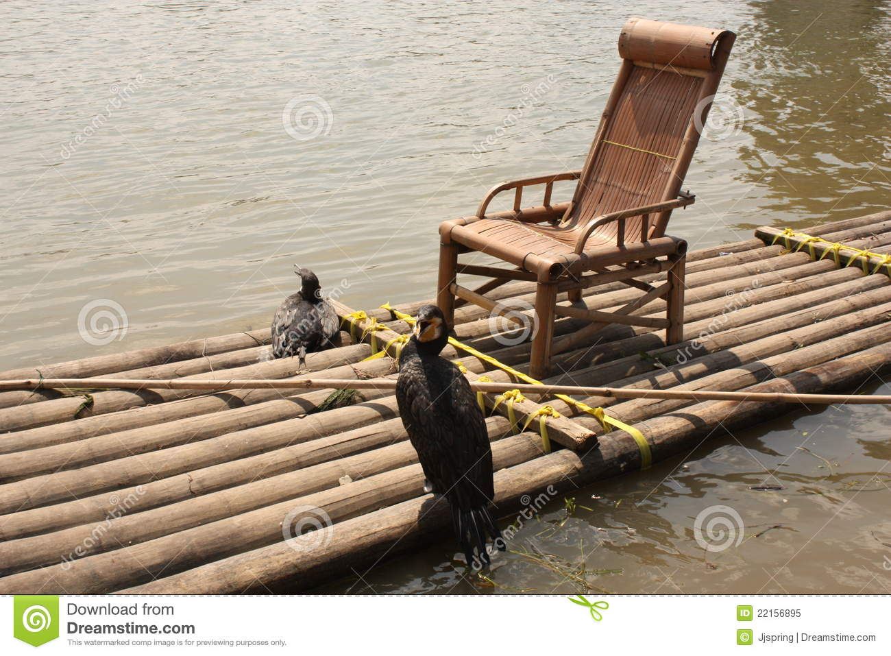 floating fishing chair cheap egg pod cormorants on bamboo raft royalty free stock photo