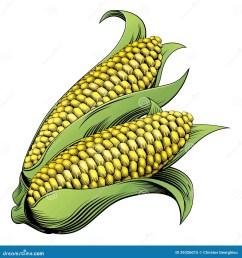 corn woodcut stock illustrations 105 corn woodcut stock illustrations vectors clipart dreamstime [ 1364 x 1300 Pixel ]